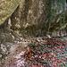 Der steinzeitlich bewohnte Abri Tschäpperfels (432m) war nur mühsam von der Strasse zu erreichen. Denn das eauf der Karte eingezeichnete Weglsin war völlig überwuchert. Erst der Aufstieg zum durch steilen Wald hinauf zum Felsen war dann wieder bequem zu begehen.