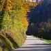 Der Weg entlang der Strasse durchs Lützeltal bis nach Laufen zog sich in die Länge...