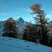 Schnee oberhalb von L'Au de Morcles. Nochmals die Cime de l'Est