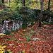 Von der Höhenburg Waldeck sind nur noch wenige Mauerreste vorhanden. <br /><br />Die Entstehung der Burg ist ungeklärt. 1302 als Schloss Valden erwähnt, gehörte die Burg dem Geschlecht derer von Rotberg. Sie wurde 1302 durch Johann von Rotberg dem Fürstbistum Basel übertragen und gelangte schliesslich an das Geschlecht der Vitztum. Zwischen 1330 und 1340 wurde sie in einer Fehde zwischen dem Fürstbischof und den Vitztum durch Truppen des Fürstbischofs eingenommen und stark beschädigt. Gleichwohl konnten die Vitztum ihr Lehen letztlich behalten und wieder aufbauen. Beim Basler Erdbeben von 1356 wurde die Burg zerstört und nicht wieder aufgebaut.
