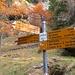 Bivio Q1728 per Alpe Peurett (indicata 5min)