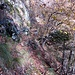 Questo è il sentiero .............. poco visibile, piuttosto sporco e invaso da piante ed erba