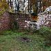 Die schön gelegene, kleine Ruine Sternenberg (468m).