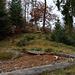 Wilde Natur überraschte mich im Aufstieg über den obersten Ostgrat vom Ottmart.