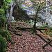 Auf der Westseite der kleinen Schlucht befindet sich etwa 10m über dem Bachlauf das Abri Büttenloch.