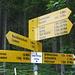 Start beim Legerlibrüggli beim Lauenensee (Postautohaltestelle)