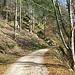 Jetzt muss ich eine Strecke auf einem breiten Fahrweg gehen. Links am Hang sieht man schon einige Ausläufer des weiter oben liegenden Brockenfelsens. Ich ging noch weiter bis zum Sattelpunkt zwischen Falkenfelsen und Brockenfelsen und dann von dort hinauf.
