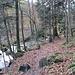 Der Weg folgt dem hier flach fließenden Gertelbach (oder heißt er hier Wiedenbach, nach seinem zweiten Zufluss?).