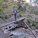Die technisch schwierigste Stelle der Tour: eine aalglatte Holzbrücke