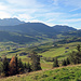 typisch Appenzellerland, saftig, grüne Wiesen bis in den Winter hinein