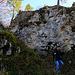 Nordseitiger Abstieg von der Ruine Tschöpperli oder Frohberg von der oben Mauerreste zu sehen sind. Wahrscheinlich war hier auch der Zugang zur Burganlage über einen Holzsteg.