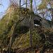 Südansicht der auf einem Gratfels gebauten Burgruine Schalberg (444m).
