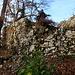 Die Zweisamkeit des englischsprachigen, schwulen Pärchens hatten wir wohl gestört mit unserem Burgenbesuch der Ruine Münchsberg :-)<br /><br />Die Burg wurde von Konrad III. Münch, einem Angehörigen dieses Basler Adelsgeschlechtes, in der zweiten Hälfte des 13.Jahrhunderts erbaut. Der von ihm begründete Familienzweig nannte sich von Münchsberg. Er übergab 1318 die Burg und den dazugehörigen Grundbesitz dem Bischof von Basel und erhielt sie als Lehen zurück. Im Erdbeben zu Basel 1356 kam der letzte Münch von Münchsberg um. Die Burg wurde zerstört.<br />