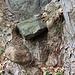 Holz und Stein 1
