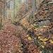 Die Grabentour verkommt durch Fallholz und Bewuchs zusehends.