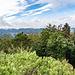 """... bergan und südlich auf den Jüngstberg (491 m). Der trägt einen Fels namens Jüngstbergelsen drauf (in manchen Karten: """"Kanzelfelsen""""). Auf ihn kann man über eine Felstreppe hochstapfen und hat oben einen sauberen Rundumblick über den Pfälzerwald."""