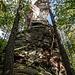 Und weiter geht esm wieder durch den Wald: Rückblick hoch zum Drachenfels.