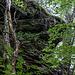 Nun noch ein Stück über Forstwege, die letzen Felstrümmer passierend, zurück zum Ausgangspunkt unserer Wanderung ...