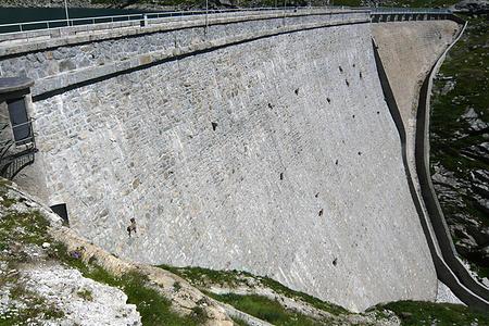 Stambecchi sulla diga di Cingino