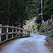 """Die erste Stunde wanderte ich in weiten Kehren durch den steilen, schattigen Wald """"Gold dil Mut"""" ins Val Niemet hinauf. <br /><br />Das Foto ist bei der zweiten Kehre beim P.1600m."""
