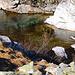 """Der glasklare Bergbach """"Ual da Niemet"""" in wunderschönen, eher wenig besuchten Tal oberhalb Innerferrera."""