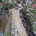 Am schönen Dorfbach entlang geht es im Tobel hinauf.