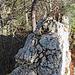 Danach wechseln sich Gehgelände mit optionalen Kraxeleinlagen ab. Die meisten Felsgräte können seitlich umgangen werden.