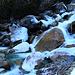 """""""Ual da Pignia"""" <br /><br />Fotografiert mit gefrorenen Felsen bei der Spitzkehre des Alpsträsschens auf 1560m."""