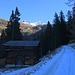 Bei der grossen Waldlichtung und kleinen Alp Selvanera (1760m) zeigte sich erstmals der Piz Curvér (2971,8m) in der Ferne.