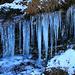 Eiszapfen am Wegesrand oberhalb Selvanera. Der nordseitige, bewaldete  Hang bekommt in den Herbst- und Wintermonaten nie einen Sonnenstrahl ab.