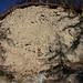 Erosion am Strässchen oberhalb Pignia. Die Ablagerungen von grossen geschliffenen Steinen zwischen festem Sediment sind wahrscheinlich während der letzten Eisszeit entstanden.