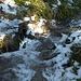 Unterwegs auf dem Grenzsteig, der in den Schattenlagen über 1000 Meter noch gefrorene Schneereste aufweist, aber noch gut zu gehen war.