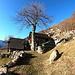 <b>Lièd (1190 m).<br />Ancora dieci minuti ed eccomi al Lièd (1190 m), un pianoro con quattro cascine, parzialmente protette dalla valanghe da un dosso roccioso chiamato Sass Scraváo. </b><br />