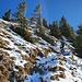 Aufstieg zur Hohen Matona über den Nordgrat