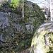 Kurz vor der Höhe des Brockenfelsens.