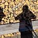 Holz vor der Hütte, samt Schattenselfie