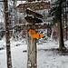 Im ganzen Wald findet man wie im Aargau üblich solch nette Wegweiser.