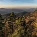 ... und von ihm blicken wir ebenfalls weit: die tiefstehende Novembersonne verzaubert das Murgtal (hier der Blick talauswärts zur Rheinebene) und die  Schwarzwald-Höhen. Es war ein rechter Herbst-Traum heut.