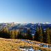 Abstieg wieder über sonnige Almwiesen