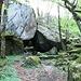 Successivamente il sentiero diminuisce la sua pendenza e attraversa gran parte della Riserva Forestale creata nel 2008, stando sempre di fianco al torrente che accompagna con il suo fragore il cammino degli escursionisti.