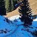 Nordseitig ist man ein paar Mal kurz im Schnee unterwegs