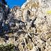 Am Klettersteig, der erste Abschnitt ist einfach, die Sicherungen hier sind noch nicht nötig