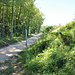 Fahrweg südlich des Steinbruchs.