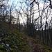 à l'approche du sommet du Haneck .