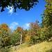 Aufstieg über Herbstwiesen