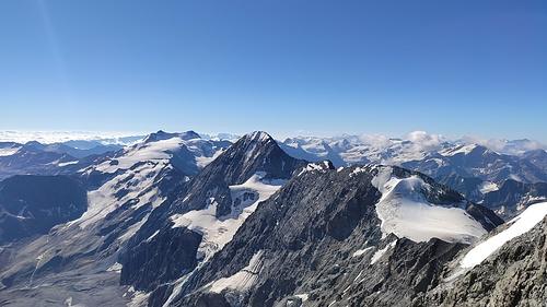 Blick auf Königsspitze...