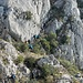 Eine von einige heikle Kletterstellen