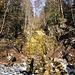 mickriger Wasserfall bei Balderschwang