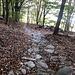 erst führt der Weg über einigermassen gepflegte Steinwege