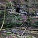 Gegenüber der leicht zugänglichen, direkt am Wanderweg gelegenen Ibachhöhle, liegt auf solothurnischem Boden die Schindelbodenhöhle (391m) 7m über dem Bachbett. Sie ist nur mit einer Bachquerung zu erreichen wobei zur Hilfe eine Eisenstange im Wasser liegt, so dass man trockenen Fusses den Ibach queren kann. Um zum Höhleneignagang zu gelangen muss kurz leicht geklettert (I) werden (rechts ausserhalb des Bildes), danach erreicht am den Höhleneingang über ein Felsband.